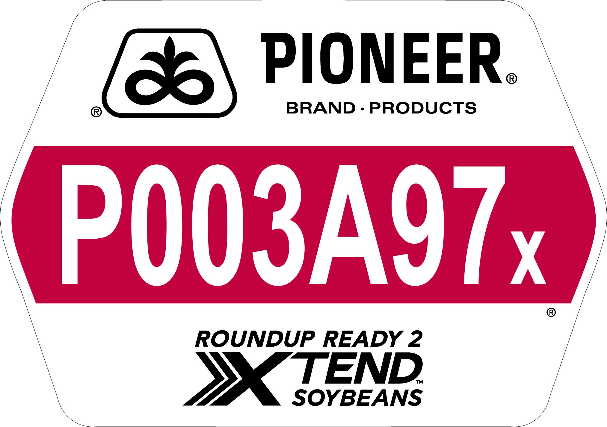 Seed - Pioneer - Soybeans - P003A97X