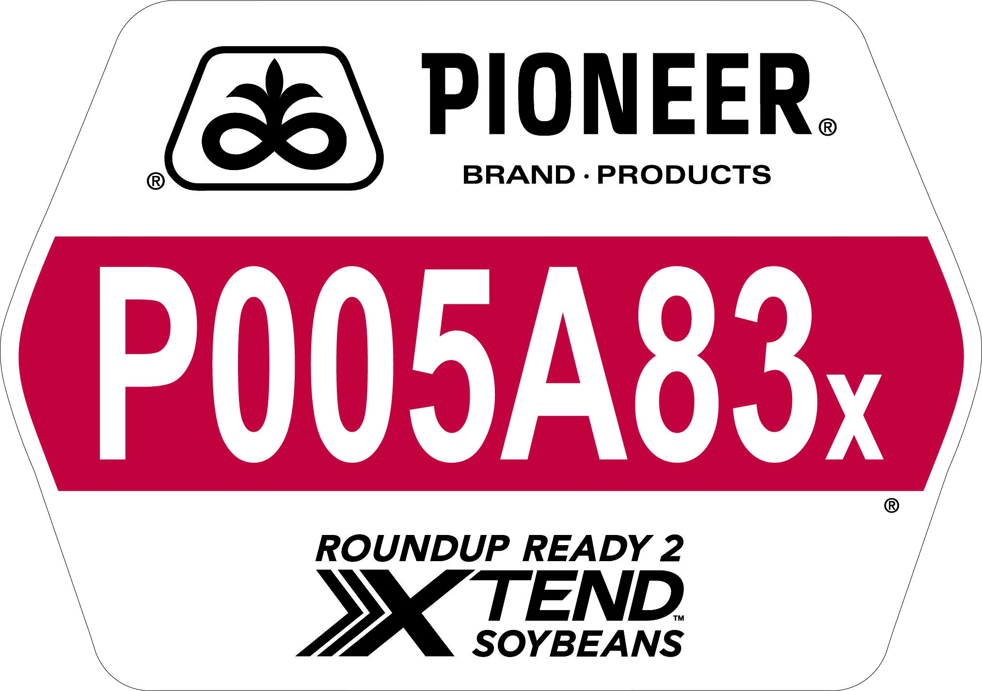 Seed - Pioneer - Soybeans - P005A83X