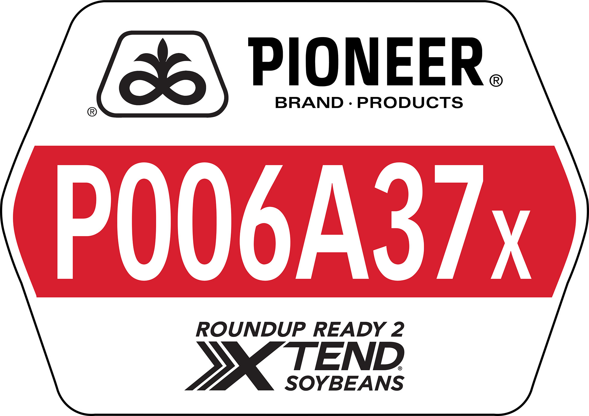Seed - Pioneer - Soybeans - P006A37X