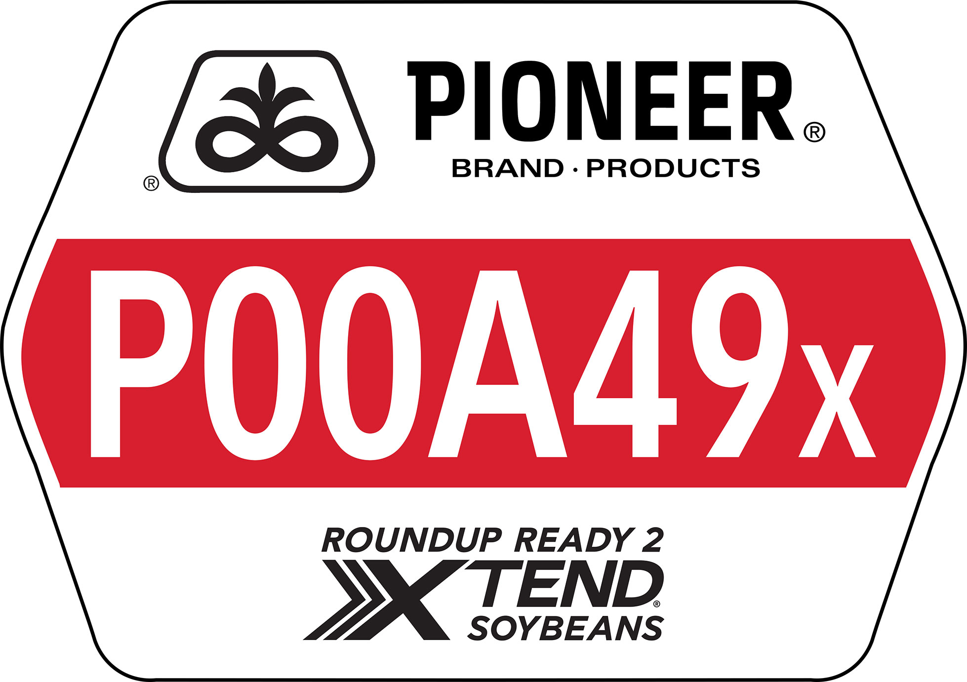 Seed - Pioneer - Soybeans - P00A49X